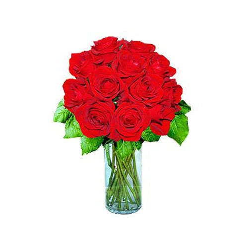 12 Short Stem Red Roses - Kyrgyzstan Delivery Only